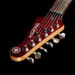 musicalex PAC 611 HFM -Pala