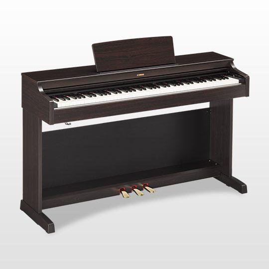 YDP-163 RW musicalexbarcelona